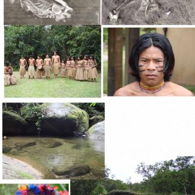 Imagens de referencia de aldeias indigenas tupinambas