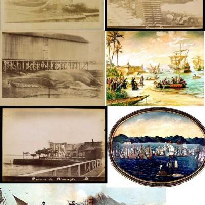 Imaqgens de referencia histórica de pesca a baleia barracuda