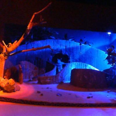 O Labirinto do Minotauro- Estudos de iluminação/ noite